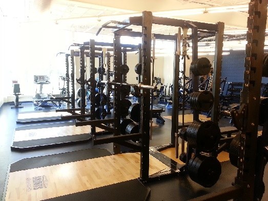 Pendulum Power Racks Siena Heights