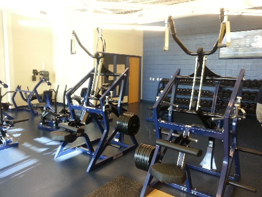 Pulldowns Siena Heights