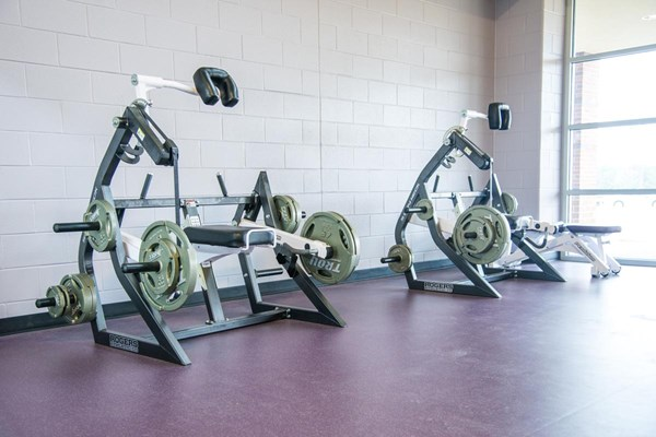 Pendulum 5-Way Neck machines