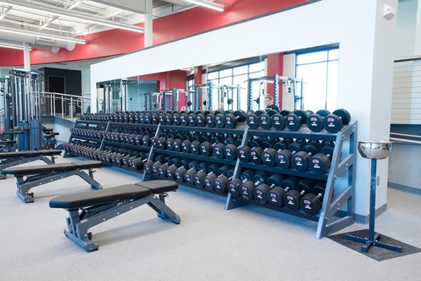 Pendulum Dumbbell racks with three Utility Benches.