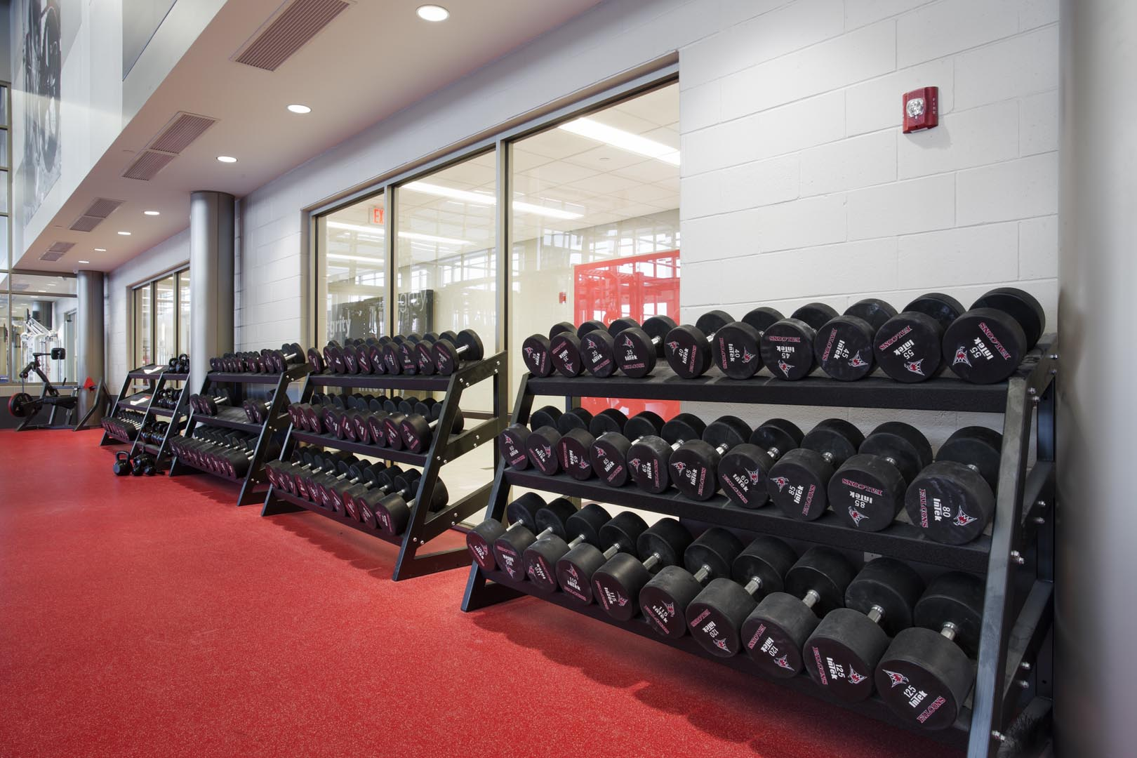 Pendulum Dumbbell Racks