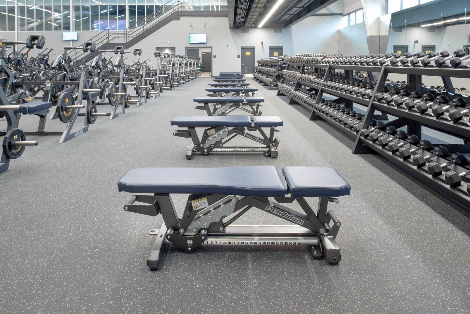 Utility Bench University of Michigan Football weight room